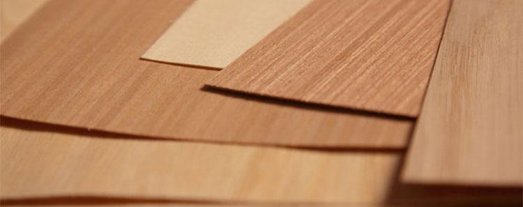 folha de madeira